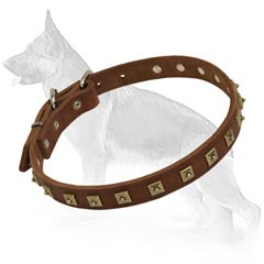 Extra Strong German Shepherd Dog Collar