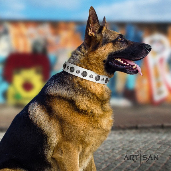 German Shepherd genuine leather dog collar with embellishments for your handsome four-legged friend