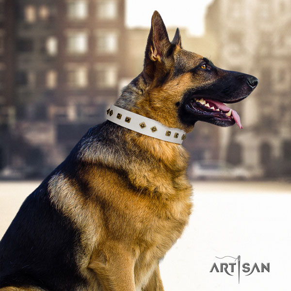 German Shepherd full grain genuine leather dog collar with studs for your impressive doggie