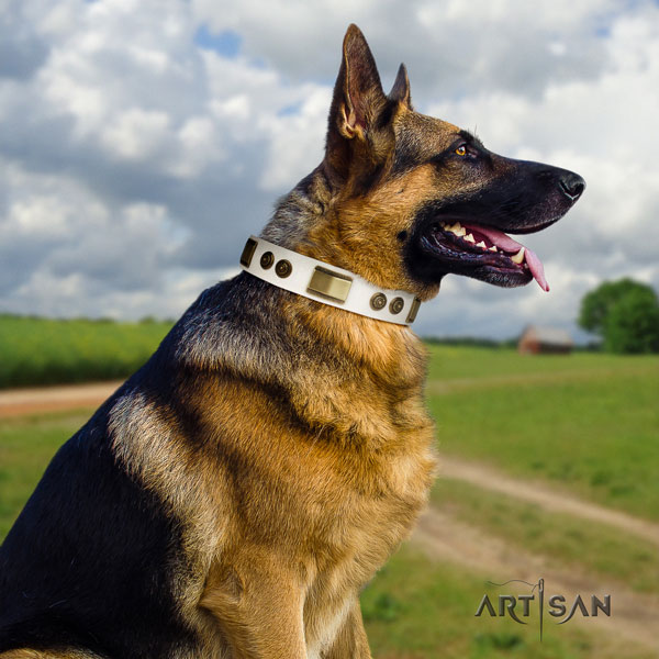 German Shepherd natural genuine leather dog collar with adornments for your attractive dog