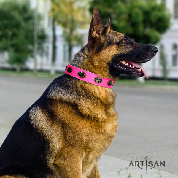 German Shepherd leather dog collar with embellishments for your attractive dog