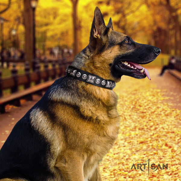 German Shepherd full grain natural leather dog collar with decorations for your beautiful four-legged friend