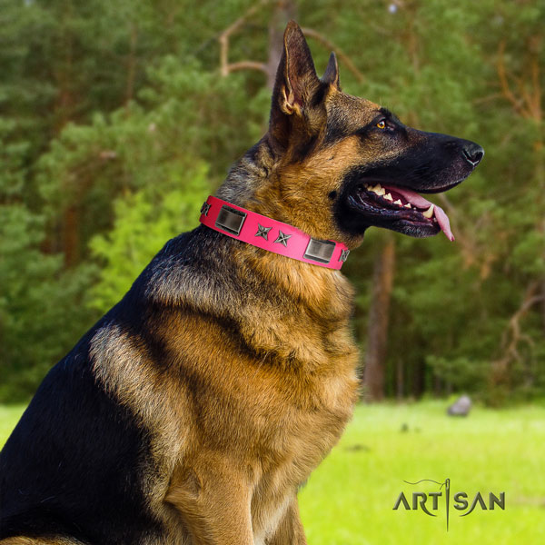 German Shepherd full grain leather dog collar with adornments for your handsome four-legged friend