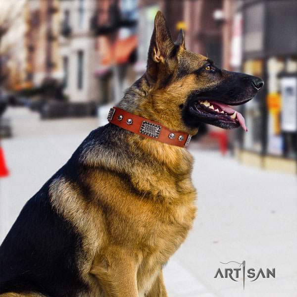 German Shepherd leather dog collar with studs for your handsome four-legged friend