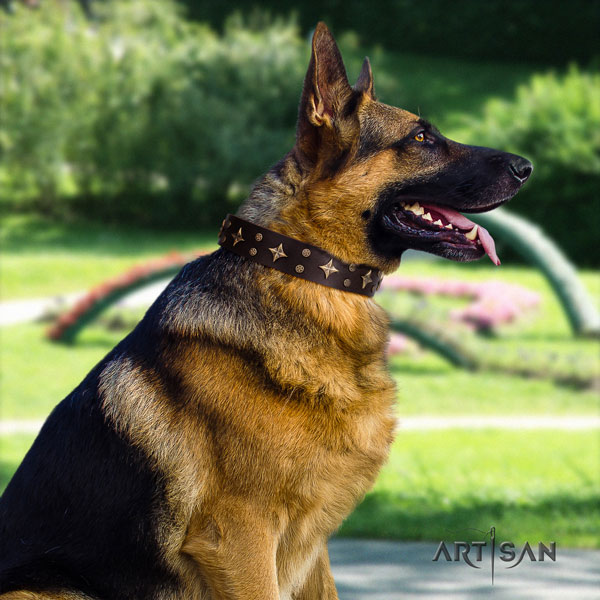 German Shepherd natural genuine leather dog collar with adornments for your lovely four-legged friend