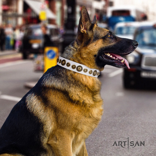 German Shepherd natural genuine leather dog collar with adornments for your impressive canine
