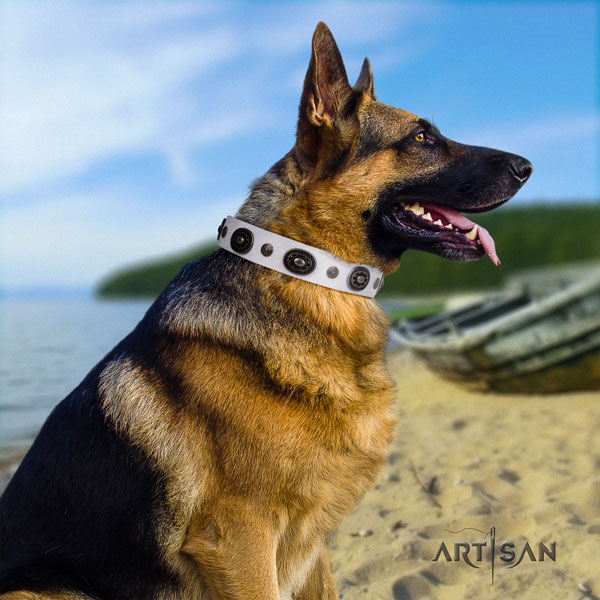 German Shepherd leather dog collar with embellishments for your stylish dog