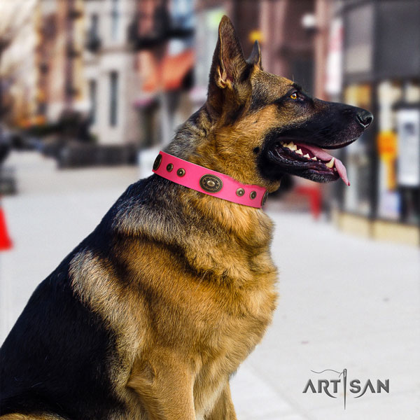 German Shepherd full grain genuine leather dog collar with studs for your beautiful doggie