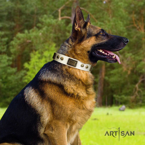 German Shepherd full grain genuine leather dog collar with adornments for your attractive dog