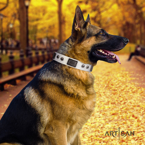 German Shepherd full grain natural leather dog collar with adornments for your attractive four-legged friend