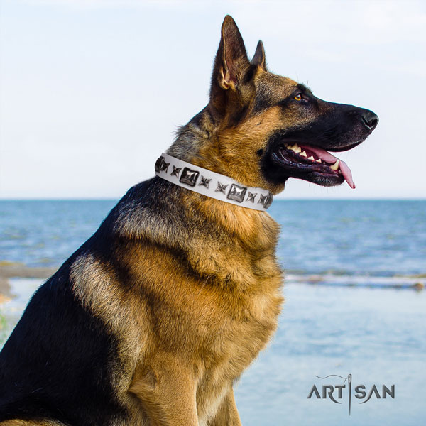 German Shepherd leather dog collar with decorations for your stylish pet