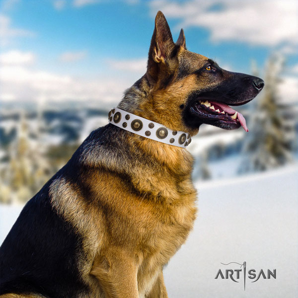 German Shepherd full grain natural leather dog collar with decorations for your beautiful dog