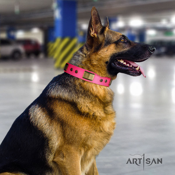 German Shepherd full grain natural leather dog collar with embellishments for your beautiful canine