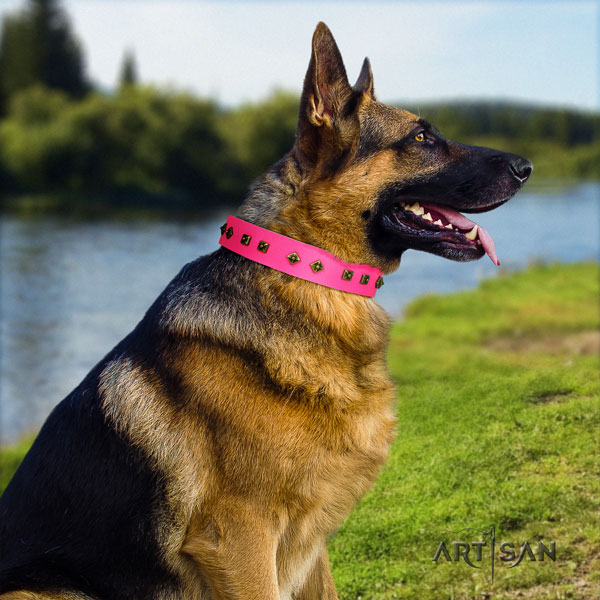 German Shepherd natural genuine leather dog collar with decorations for your beautiful four-legged friend