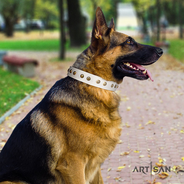 German Shepherd full grain genuine leather dog collar with decorations for your stylish canine