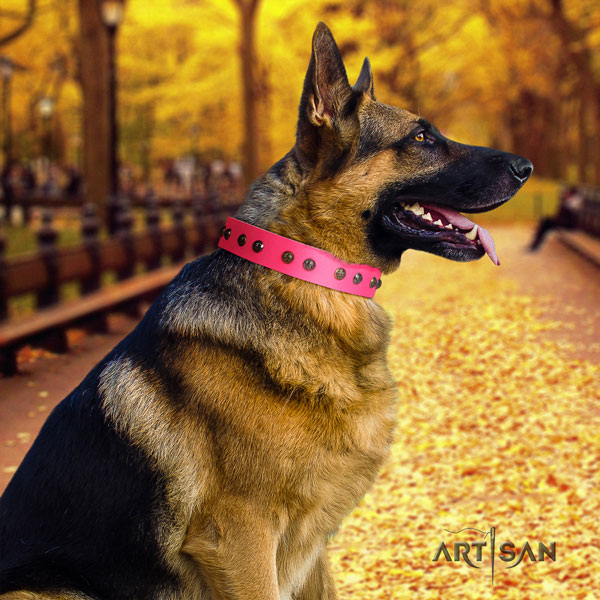German Shepherd full grain leather dog collar with decorations for your lovely four-legged friend