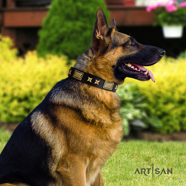 German Shepherd full grain natural leather dog collar with decorations for your lovely canine