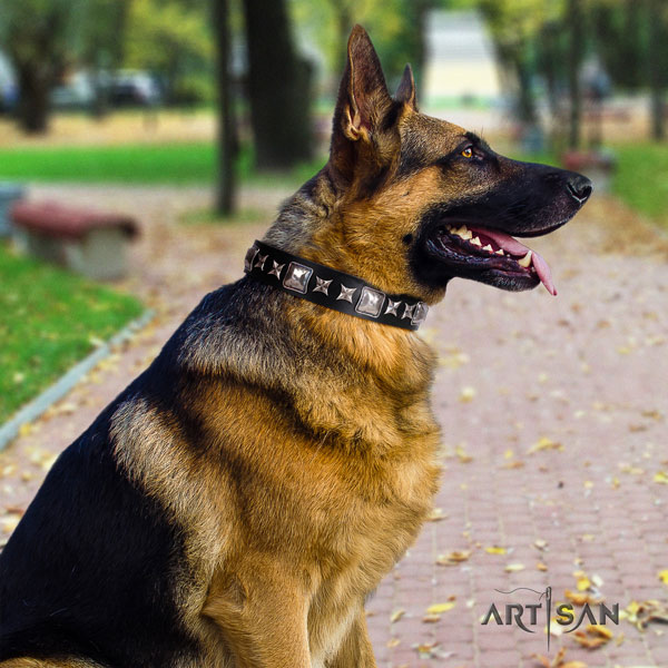 German Shepherd full grain genuine leather dog collar with adornments for your beautiful pet