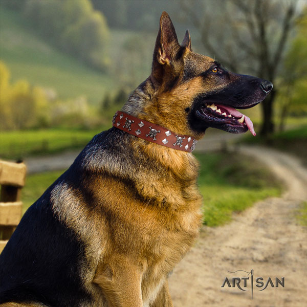 German Shepherd full grain natural leather dog collar with decorations for your handsome dog
