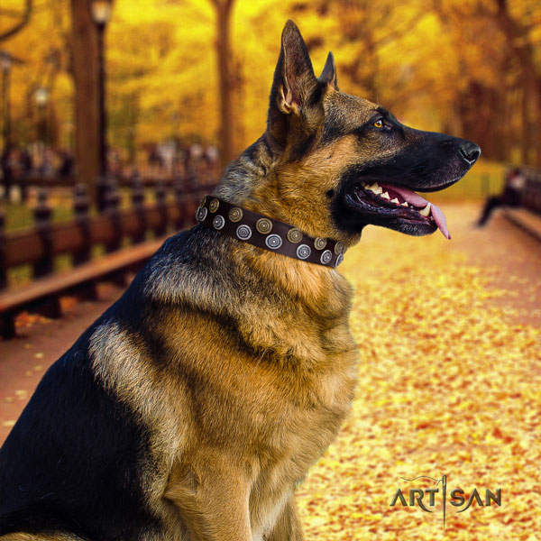 German Shepherd leather dog collar with decorations for your beautiful four-legged friend