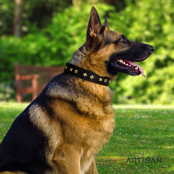German Shepherd leather dog collar with decorations for your impressive canine