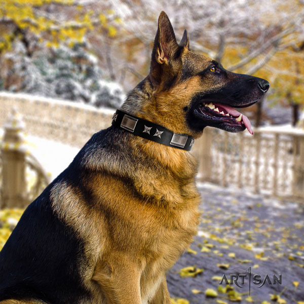 German Shepherd full grain natural leather dog collar with decorations for your stylish pet
