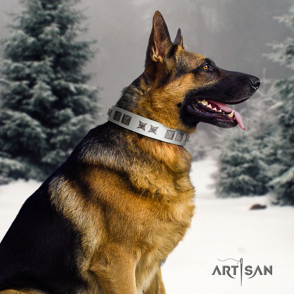 German Shepherd extraordinary full grain genuine leather collar with studs for your canine