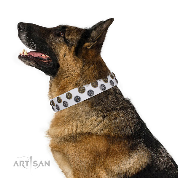 German Shepherd easy to adjust full grain leather dog collar for daily walking