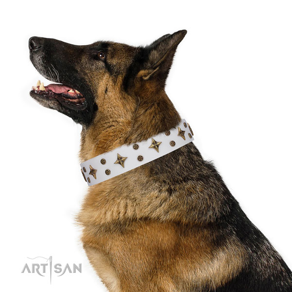 German Shepherd adjustable full grain natural leather dog collar for basic training