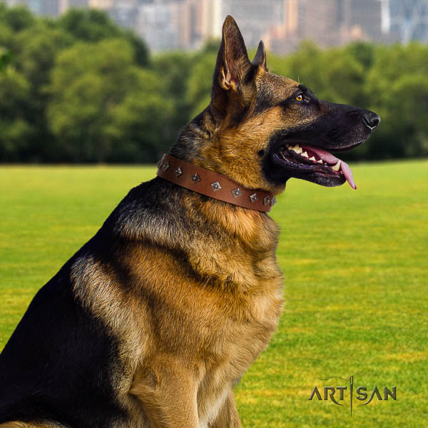 German Shepherd impressive genuine leather collar with studs for your four-legged friend