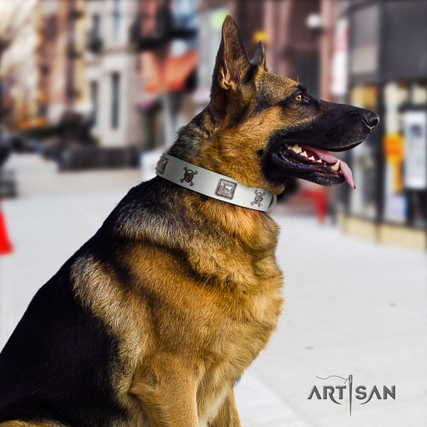 German Shepherd stunning full grain leather collar with adornments for your pet