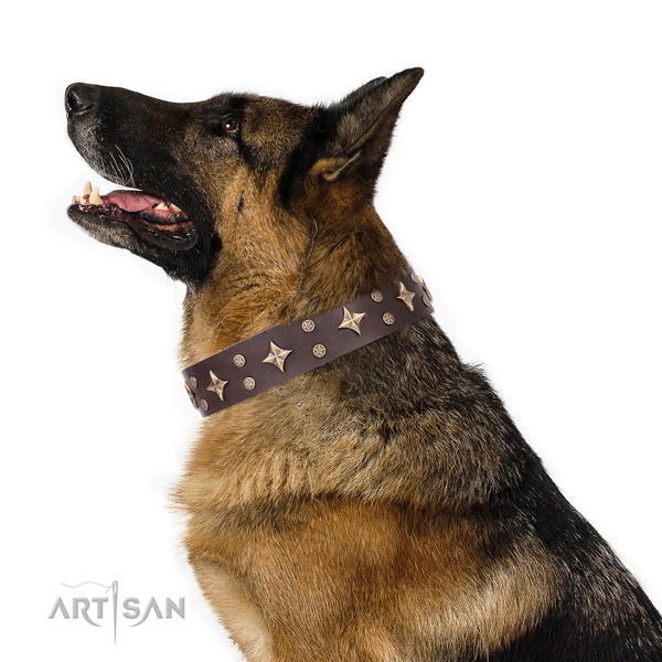 German Shepherd decorated full grain natural leather dog collar for basic training