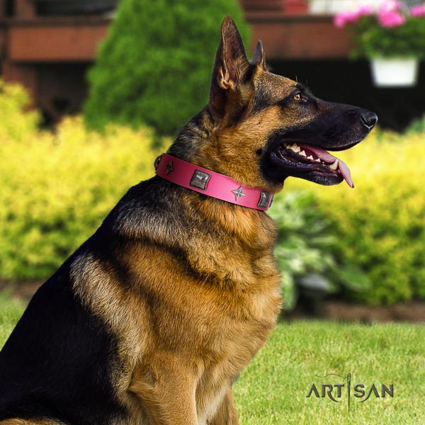 German Shepherd adjustable full grain genuine leather dog collar with awesome decorations