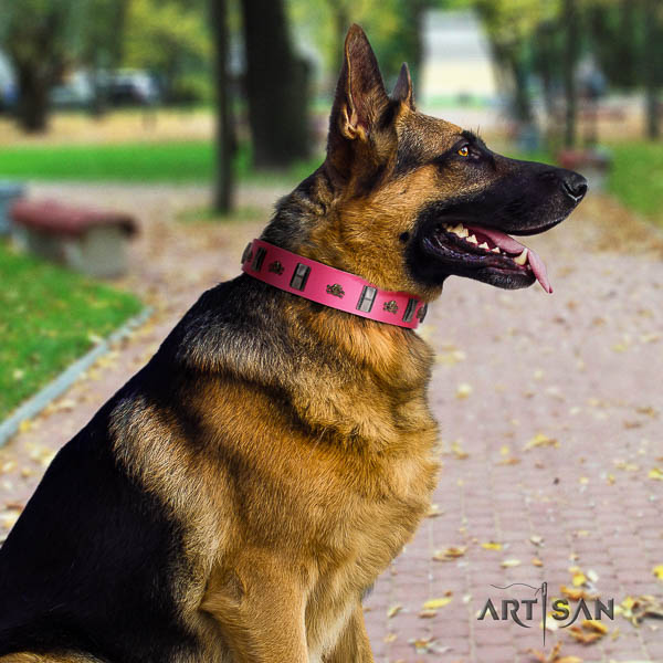 German Shepherd perfect fit full grain natural leather dog collar with stylish design studs