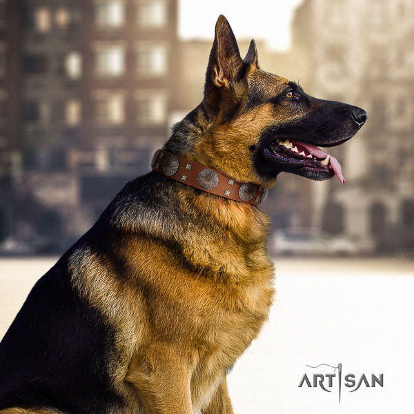 German Shepherd fashionable natural genuine leather collar with studs for your four-legged friend