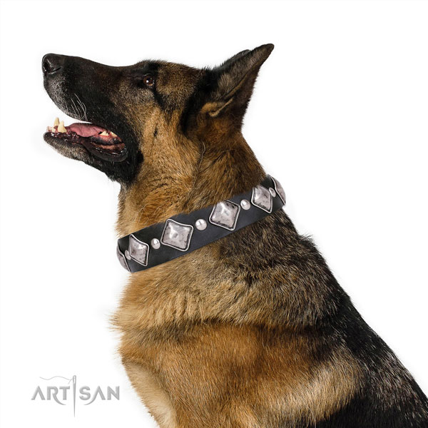 German Shepherd extraordinary natural genuine leather dog collar for fancy walking