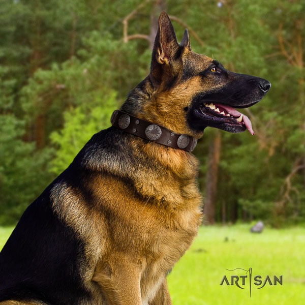 German Shepherd top quality natural genuine leather dog collar with impressive studs