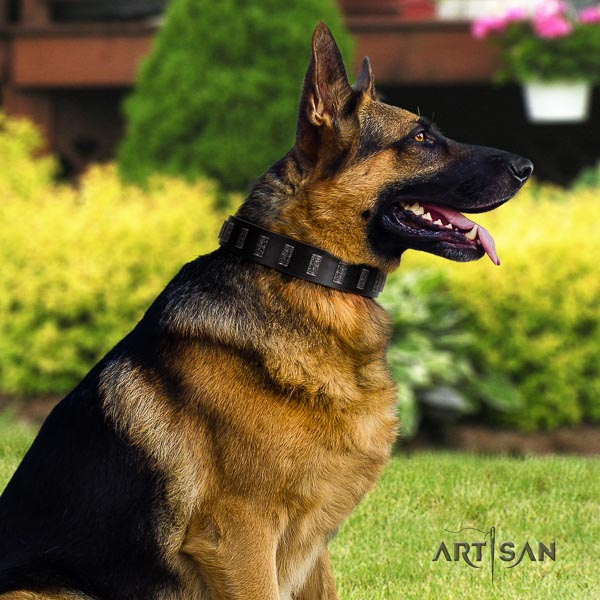 German Shepherd easy wearing leather dog collar with stylish design adornments