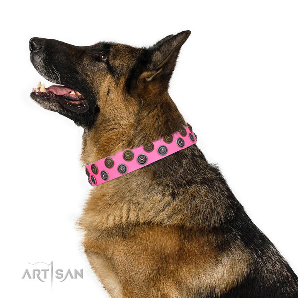 German Shepherd adjustable full grain natural leather dog collar for daily use