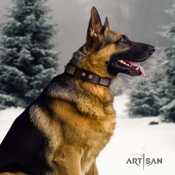 German Shepherd extraordinary full grain genuine leather collar with decorations for your four-legged friend