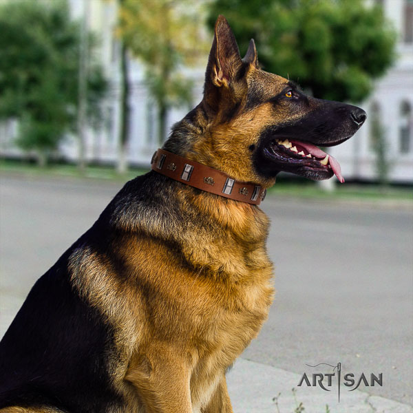 German Shepherd best quality natural genuine leather dog collar with incredible studs