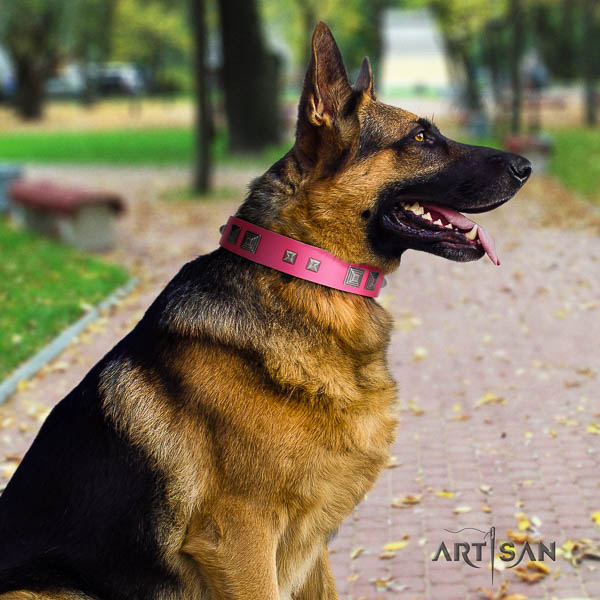 German Shepherd handmade full grain leather collar with decorations for your four-legged friend