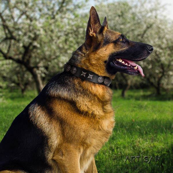 German Shepherd easy to adjust full grain leather collar with embellishments for your dog