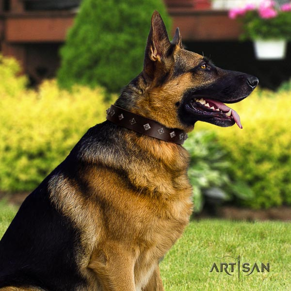 German Shepherd awesome leather collar with embellishments for your doggie