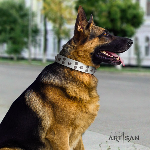 German Shepherd exquisite full grain leather collar with decorations for your four-legged friend