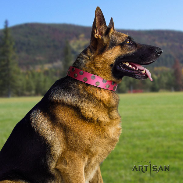 German Shepherd top quality natural genuine leather dog collar with remarkable embellishments