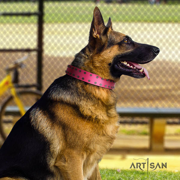 German Shepherd easy wearing natural genuine leather dog collar with awesome decorations