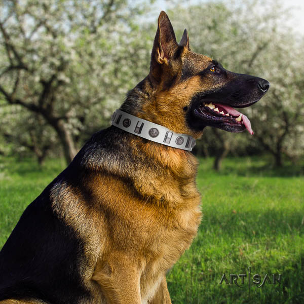 German Shepherd easy to adjust full grain leather dog collar with impressive decorations