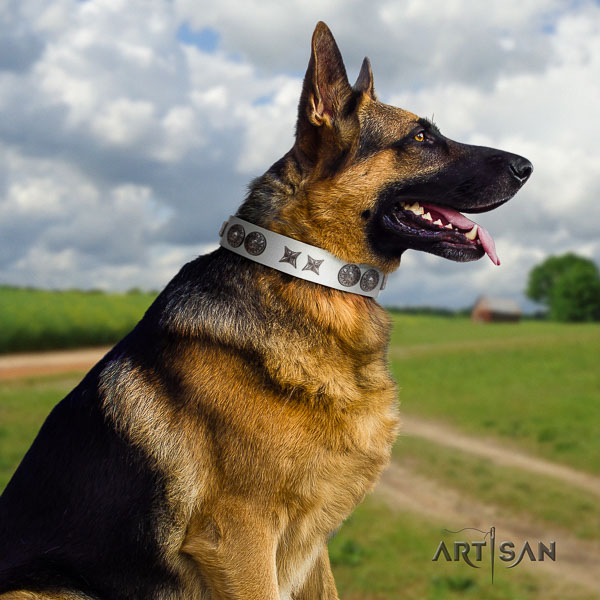 German Shepherd easy to adjust full grain genuine leather collar with studs for your four-legged friend