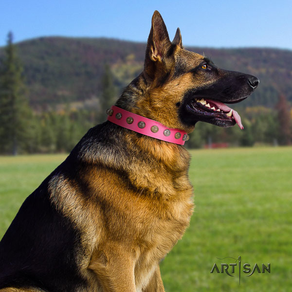 German Shepherd stylish full grain genuine leather collar with embellishments for your canine